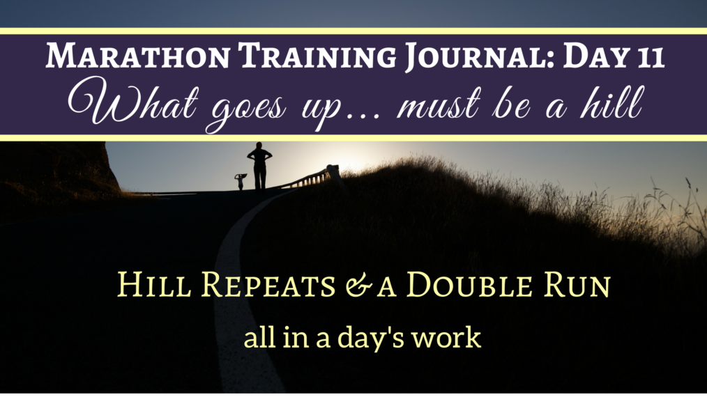 Marathon Training Journal Day 11