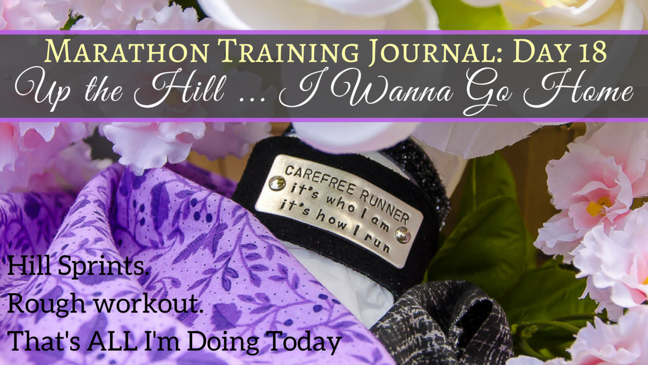 Marathon Training Journal Day 18 Hill Sprints