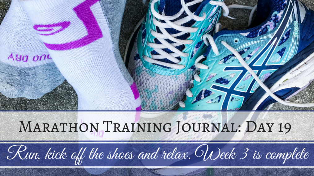 Training Journal Day 19 Long Run
