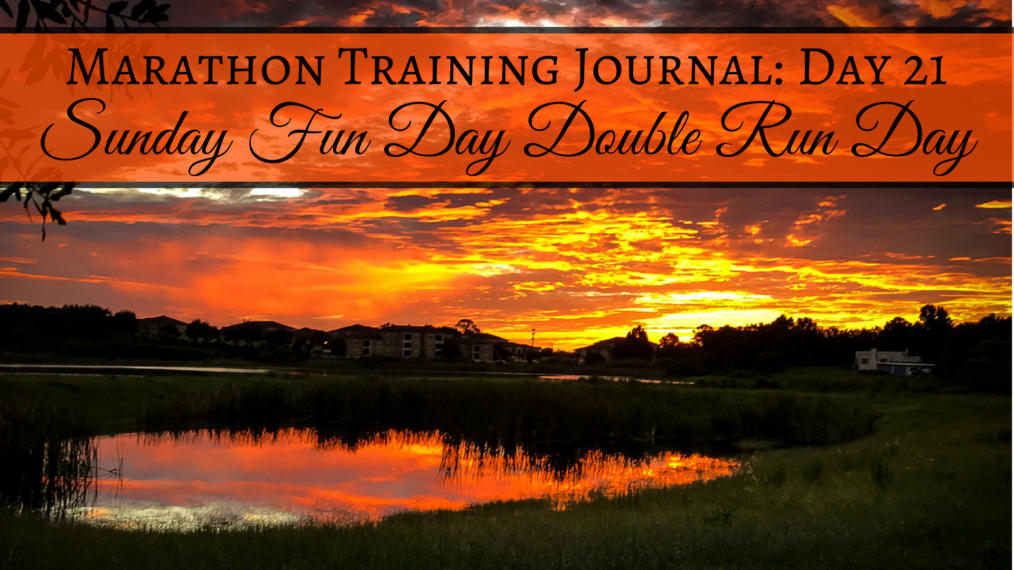 Training Journal Sunday Fun Run