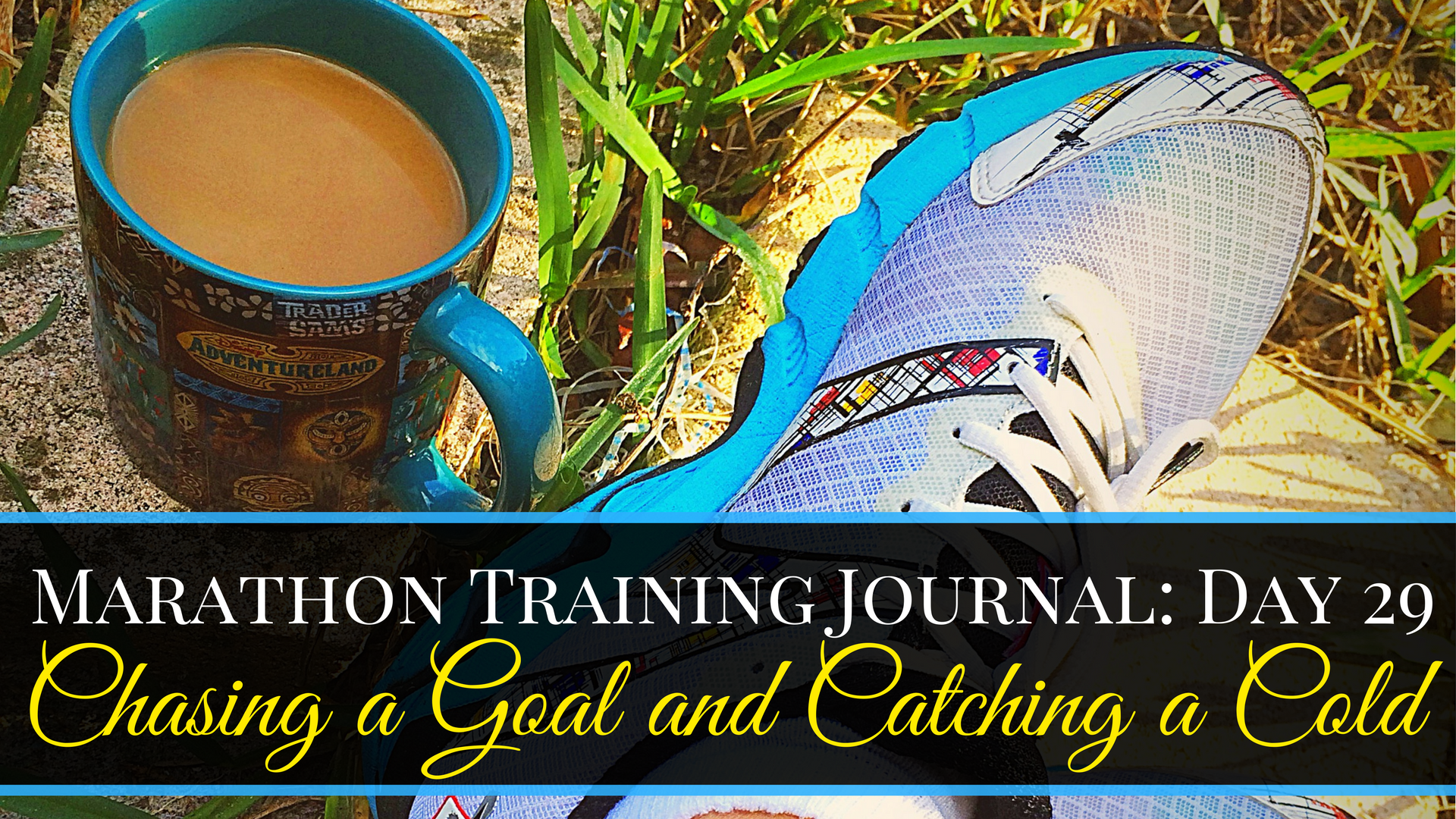 Marathon Training Journal- Day 29