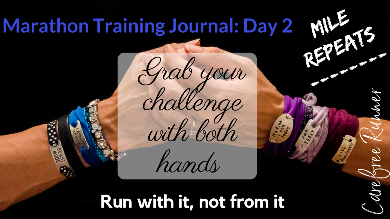 Marathon Training Journal Day 2