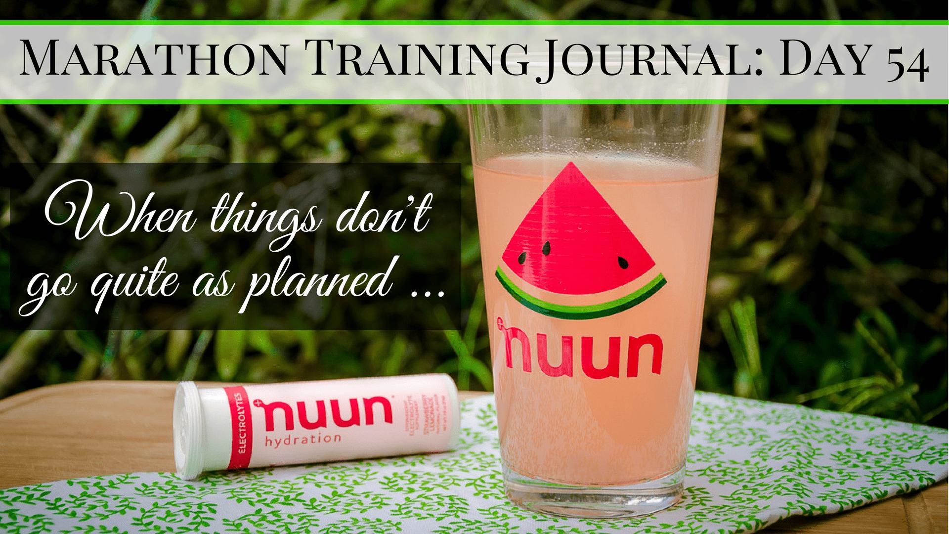 Marathon Training Journal Day 54